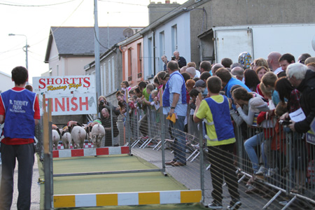 Some shots from the 2011 Ballyshannon pig races.